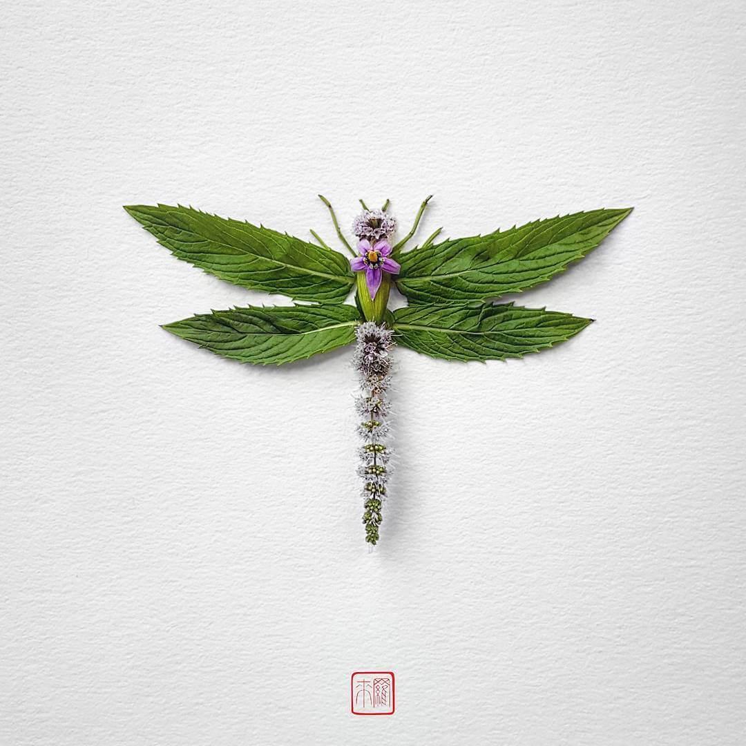 insect flower arrangements raku inoue freeyork 11