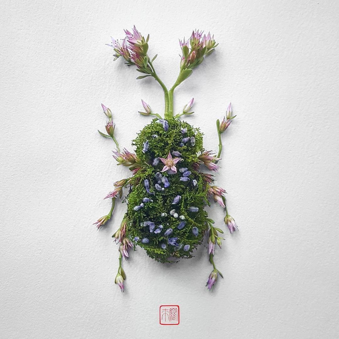 insect flower arrangements raku inoue freeyork 2