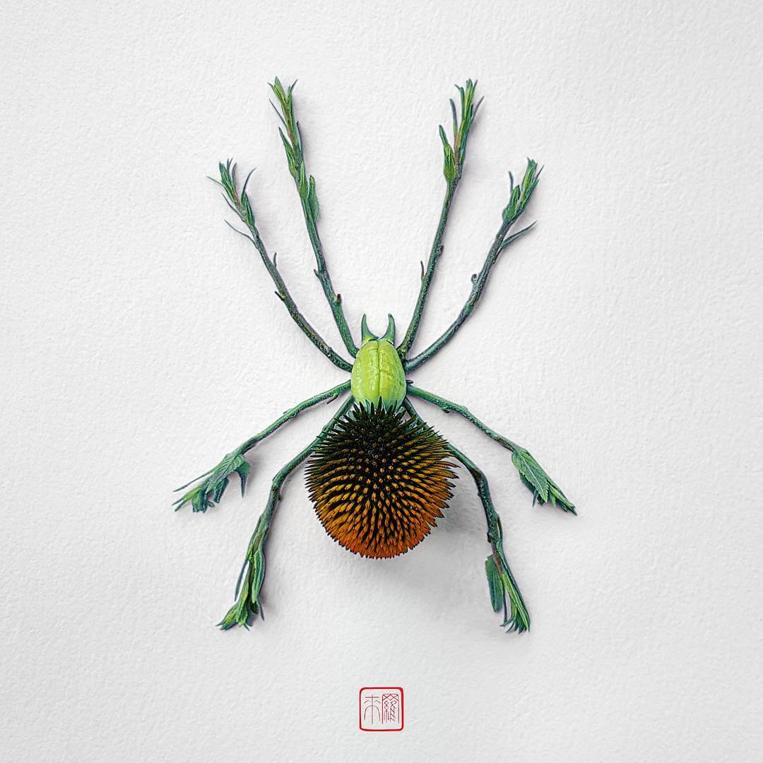 insect flower arrangements raku inoue freeyork 8