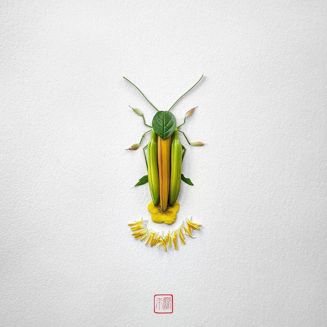 insect flower arrangements raku inoue freeyork 9