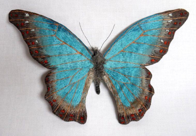 moth yumi okita fy 5