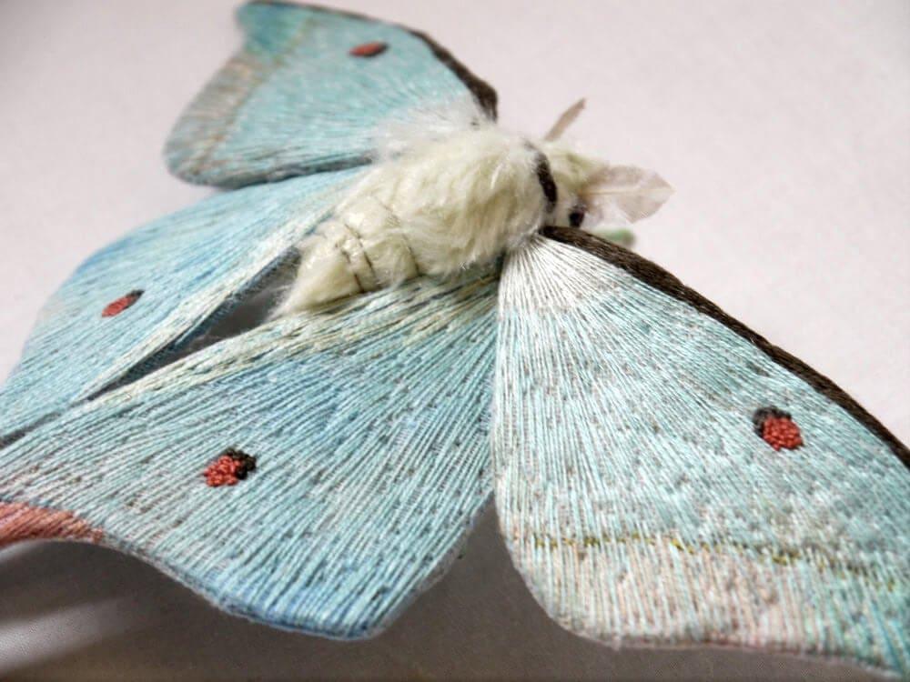 moth yumi okita fy 7