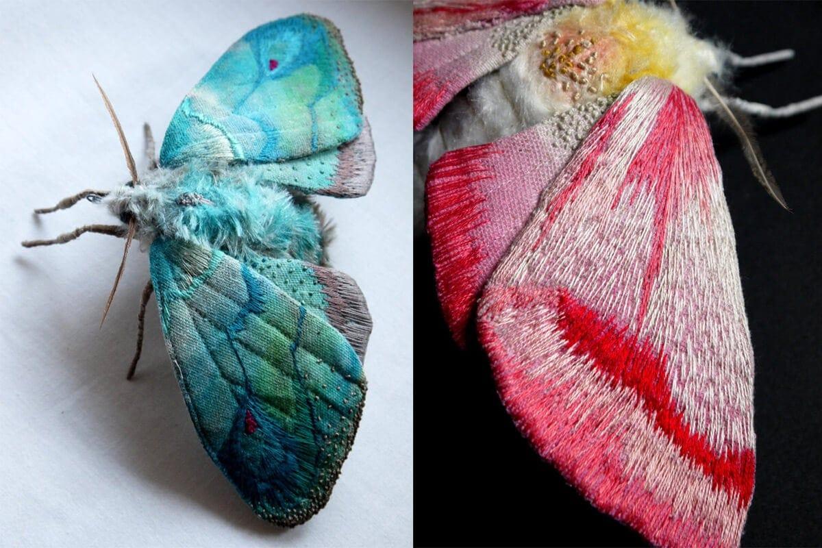 moth yumi okita fy 8