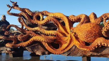 carved redwood octopus freeyork 1
