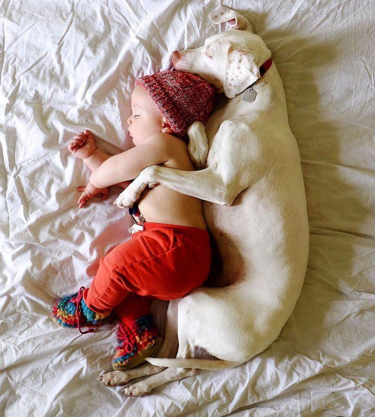 rescue dog love child nora elizabeth spence freeyork 1