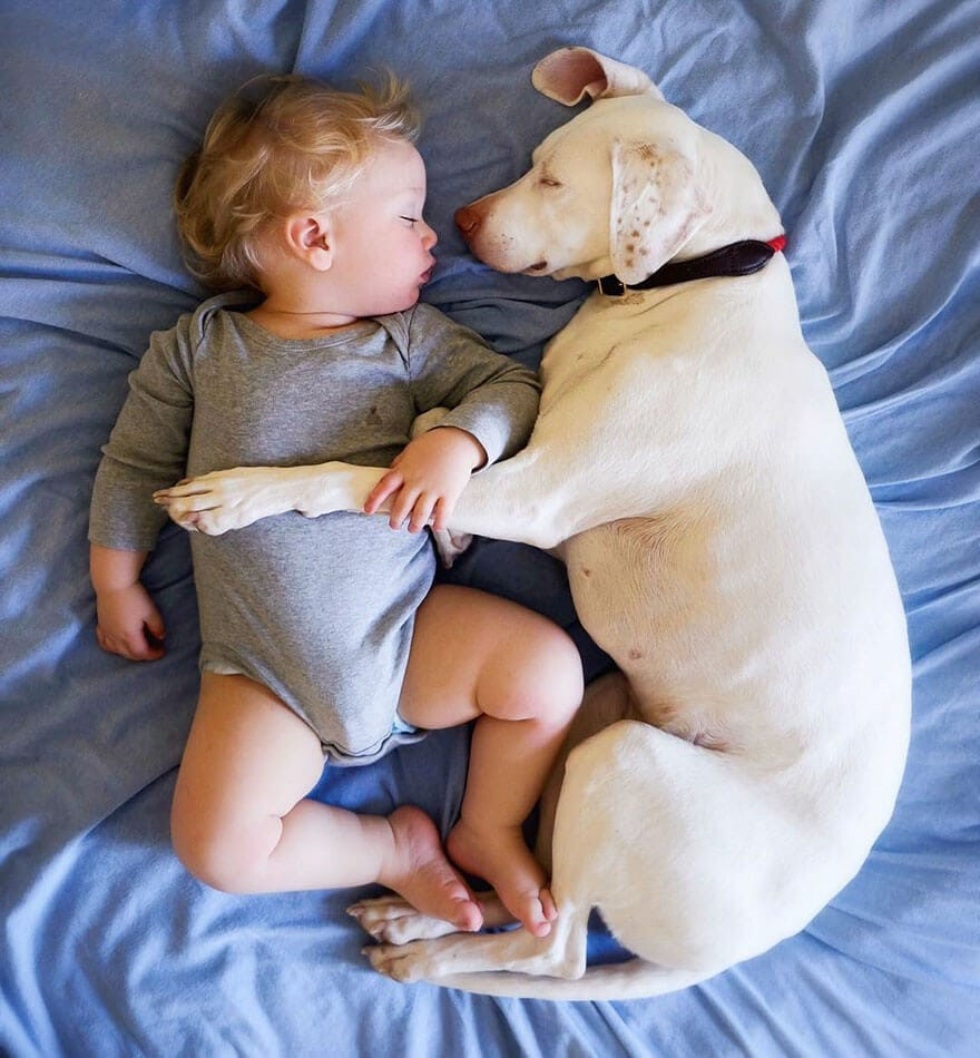 rescue dog love child nora elizabeth spence freeyork 11