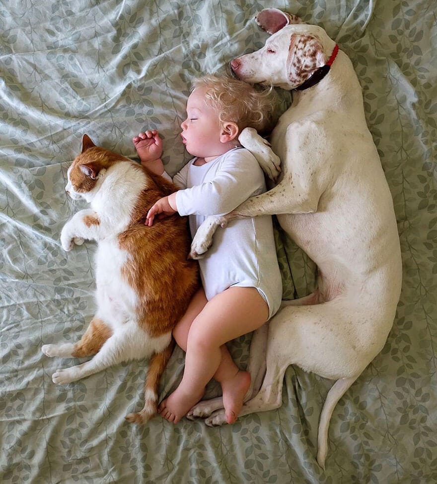 rescue dog love child nora elizabeth spence freeyork 13