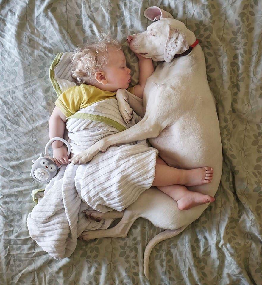 rescue dog love child nora elizabeth spence freeyork 15