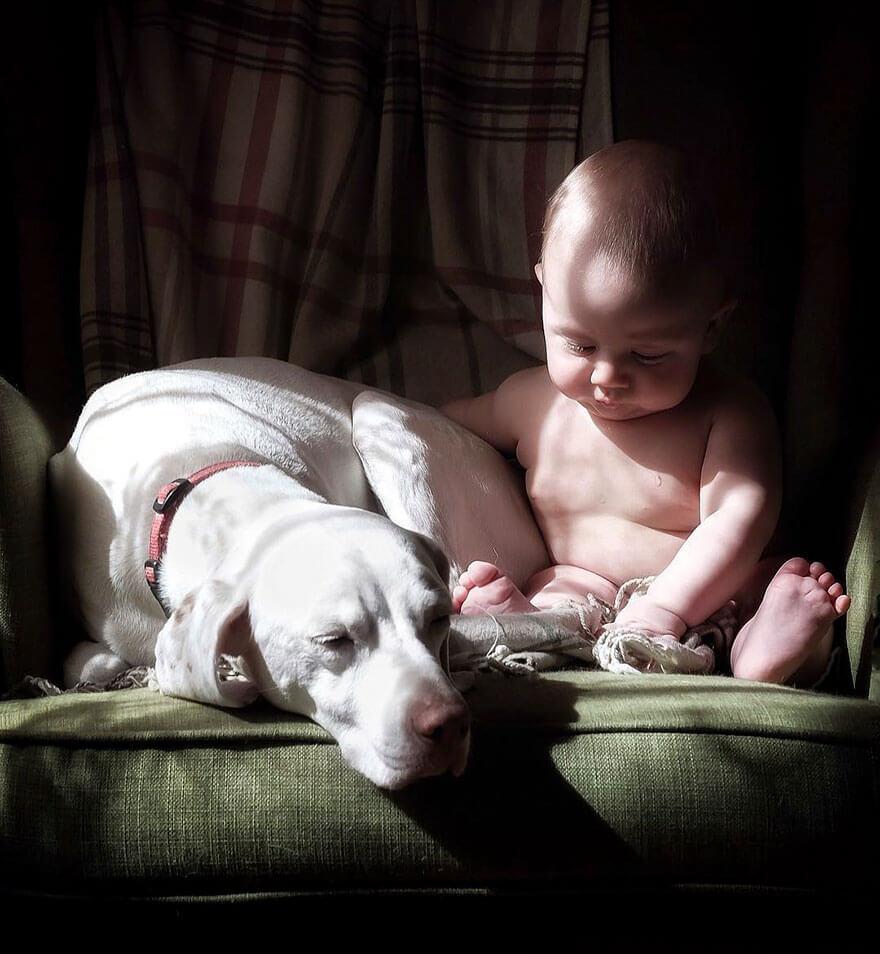 rescue dog love child nora elizabeth spence freeyork 2