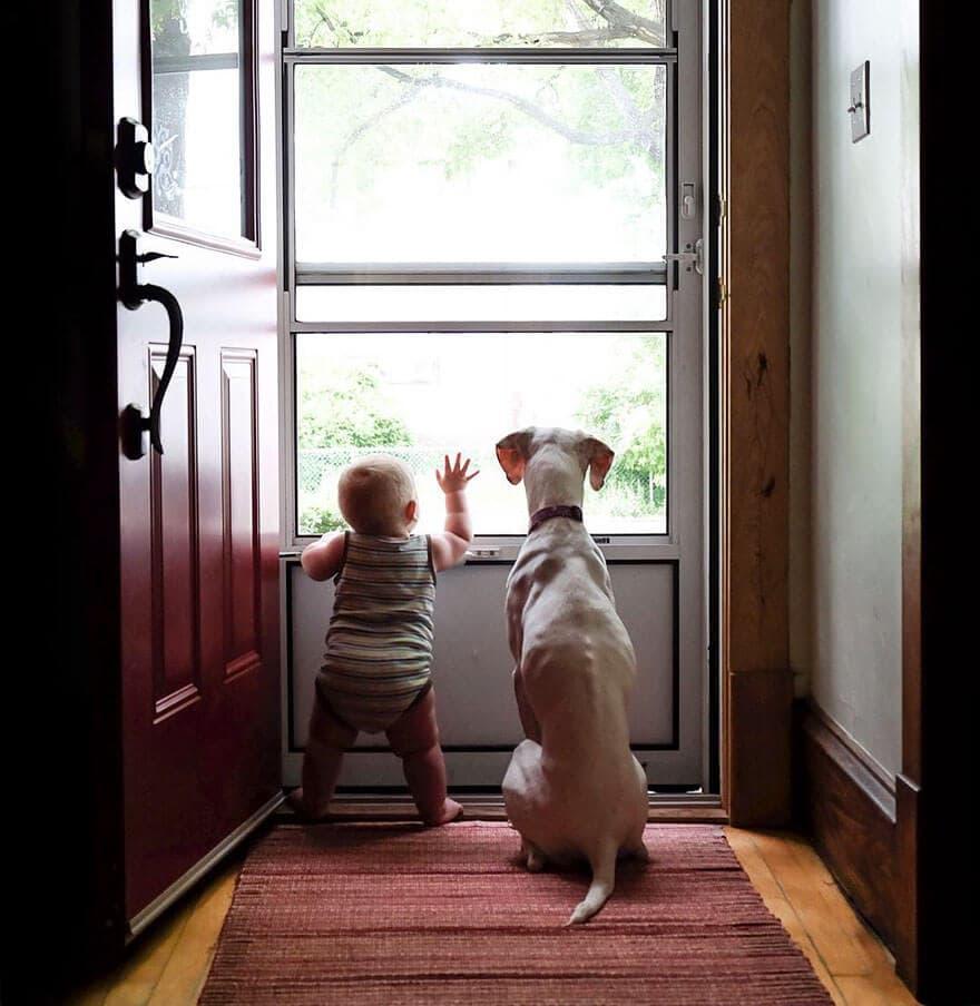 rescue dog love child nora elizabeth spence freeyork 4