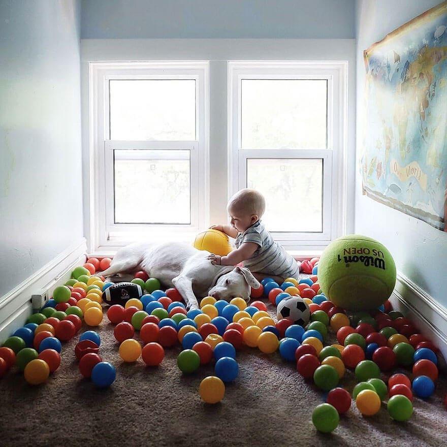 rescue dog love child nora elizabeth spence freeyork 6