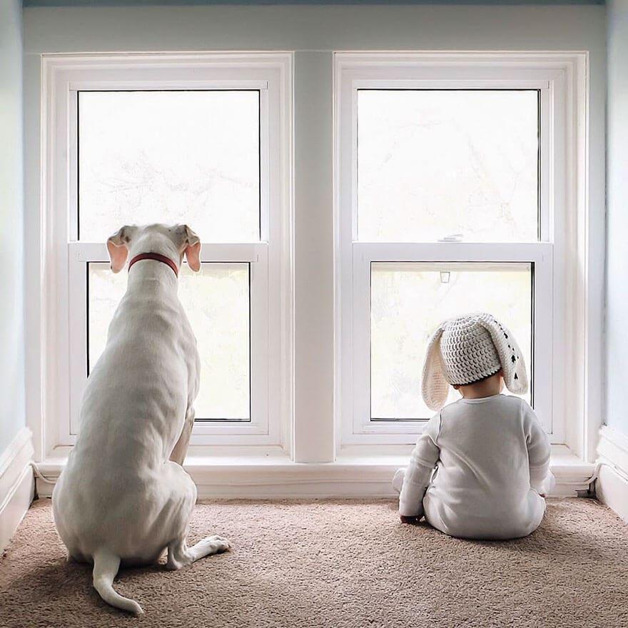 rescue dog love child nora elizabeth spence freeyork 8