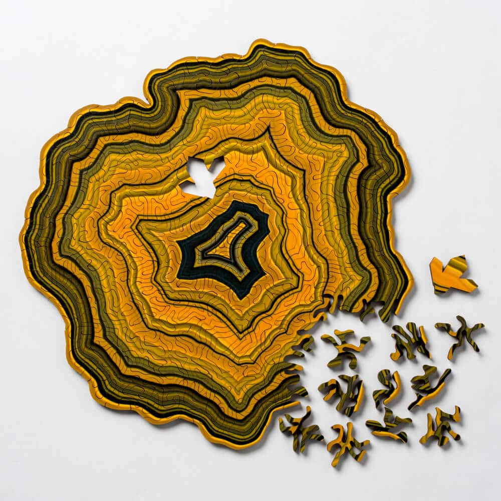 geode jigsaw puzzles nervous system fy 1