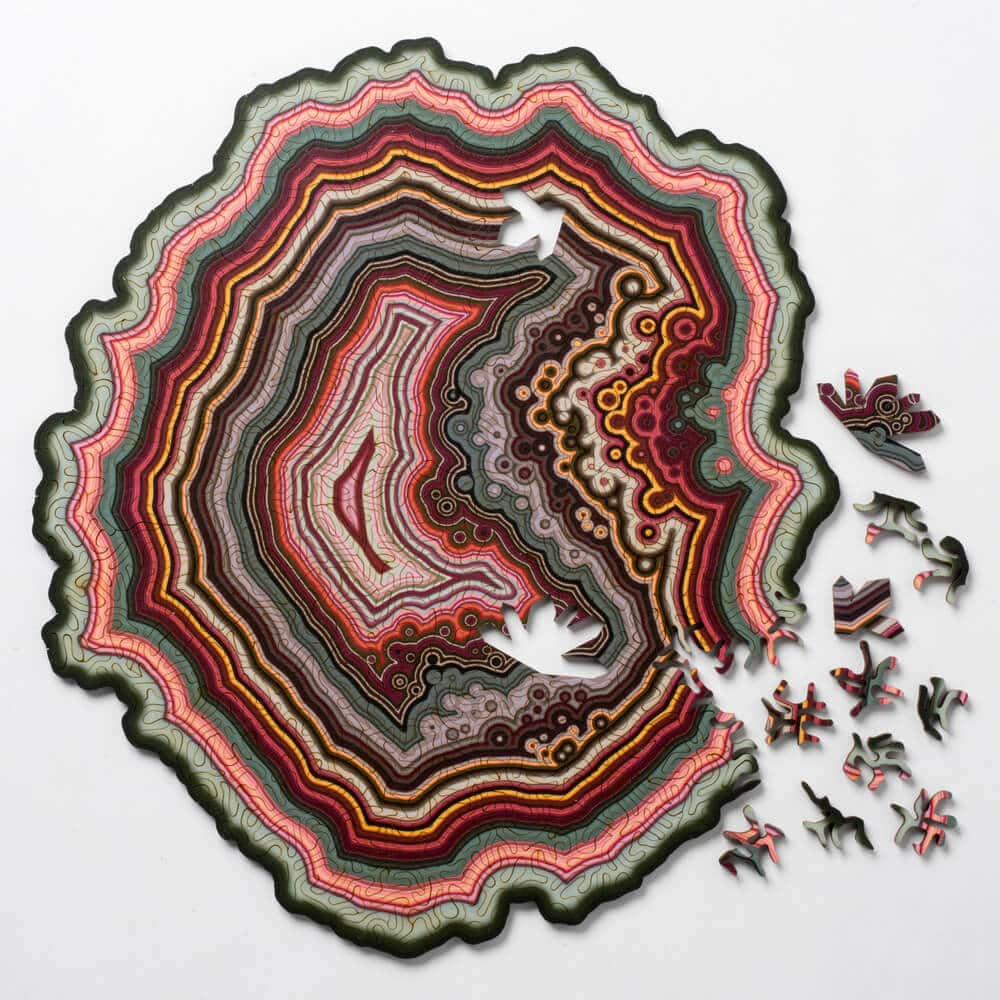 geode jigsaw puzzles nervous system fy 5
