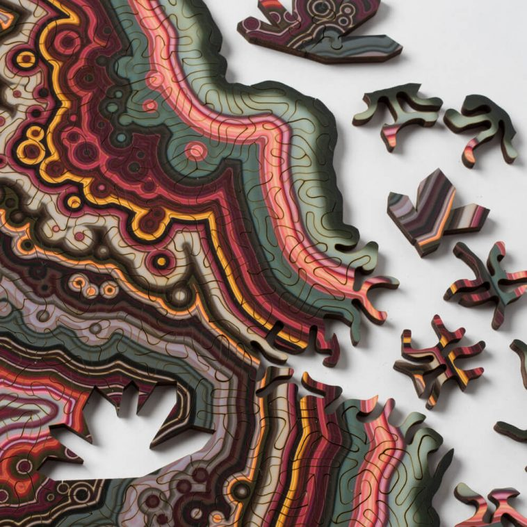 geode jigsaw puzzles nervous system fy 6