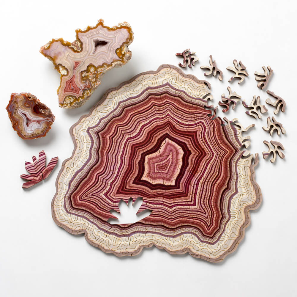 geode jigsaw puzzles nervous system fy 7