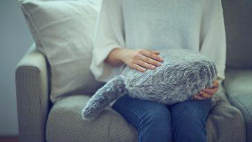 qoobo cushion kickstarter yukai fy 5