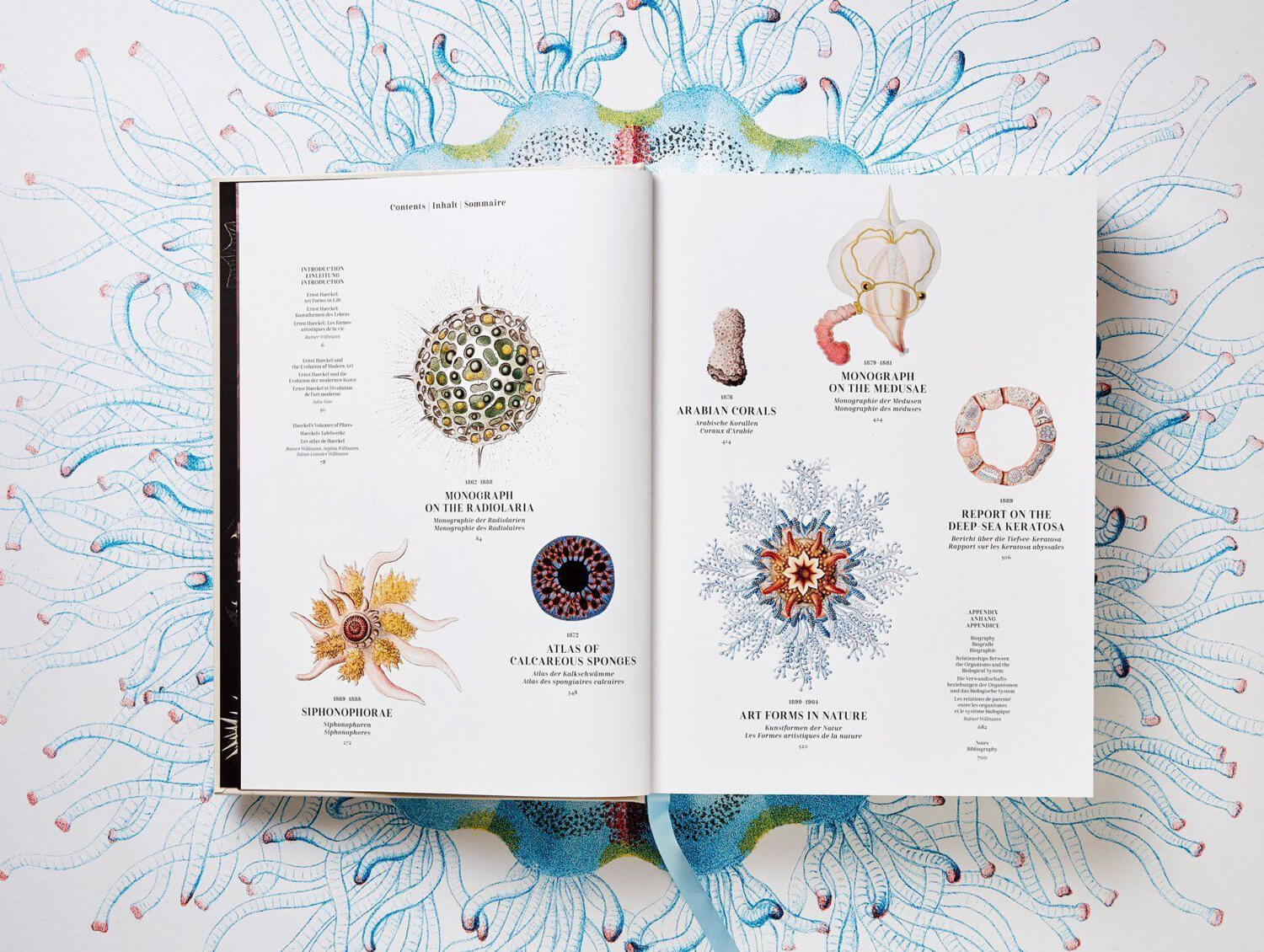 the art and science of ernst haeckel fy 2
