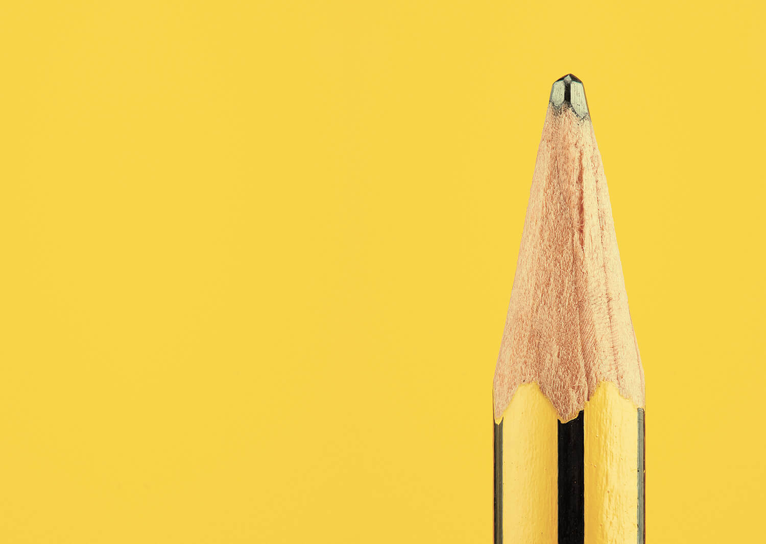 the secret life of the pencil fy 4