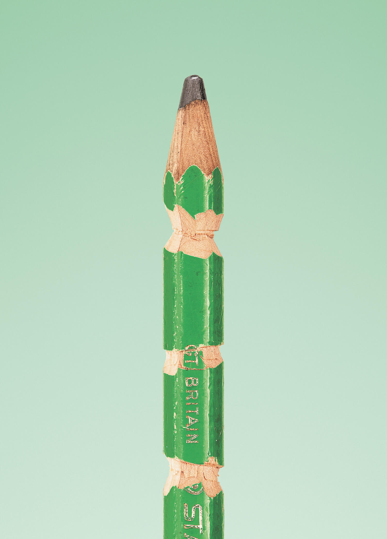 the secret life of the pencil fy 7