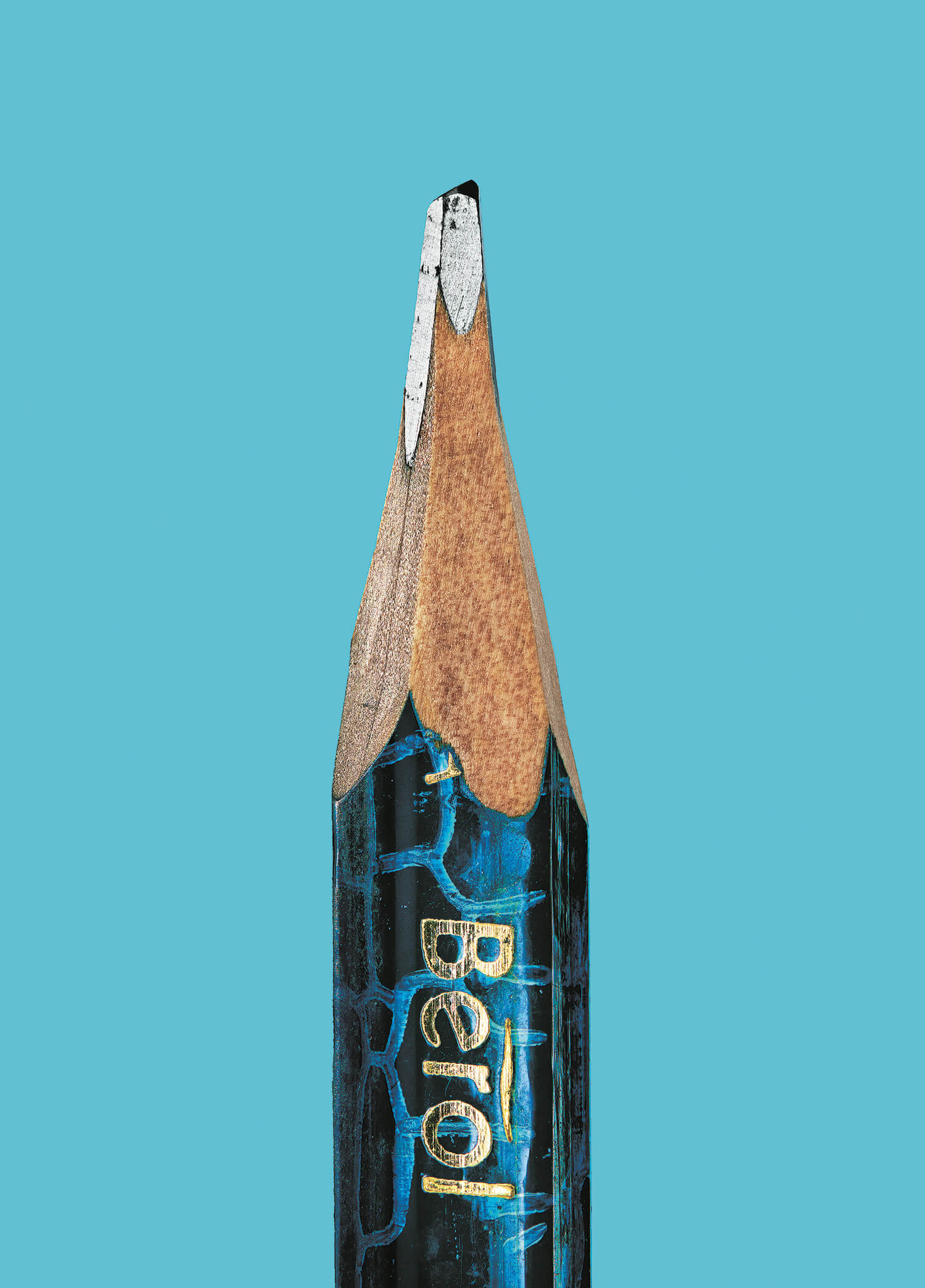 the secret life of the pencil fy 8