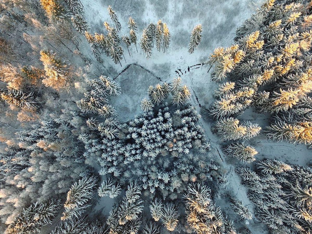 2017 siena international photo awards fy 15