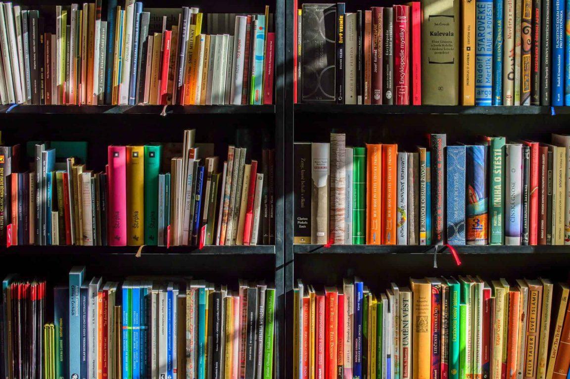 books bookstore book reading