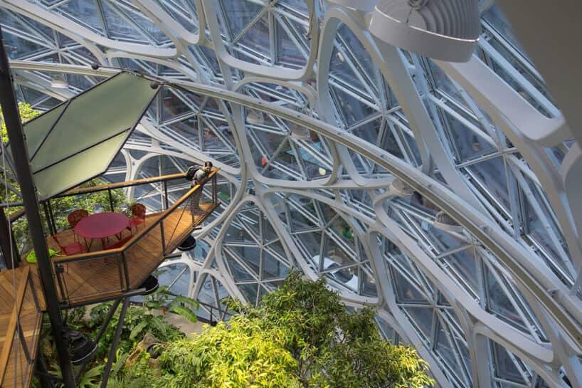 amazon biospheres 9