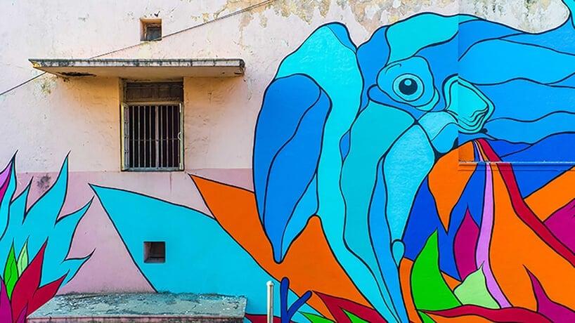 bicicleta sem freio justkids dheli murals 1