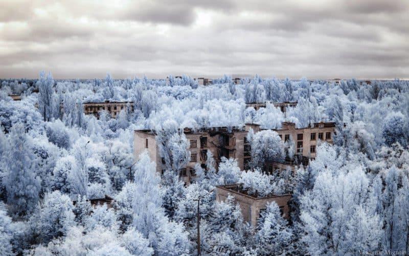 chernobyl vladimir migutin 1