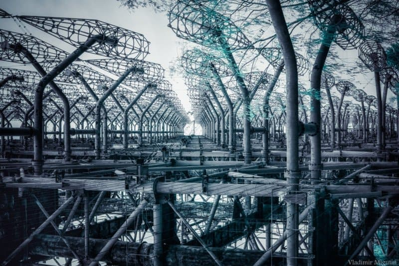 chernobyl vladimir migutin 10