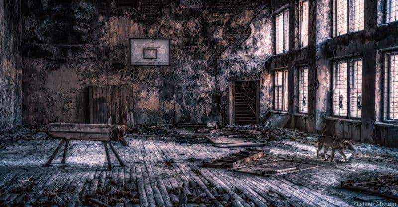 chernobyl vladimir migutin 13