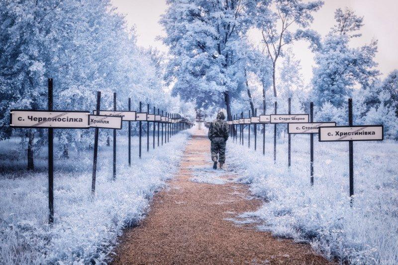 chernobyl vladimir migutin 4