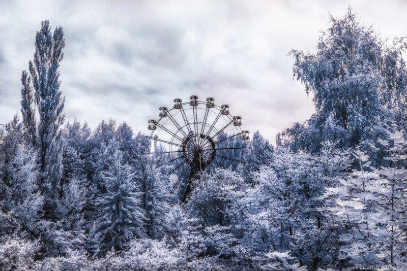 chernobyl vladimir migutin 8