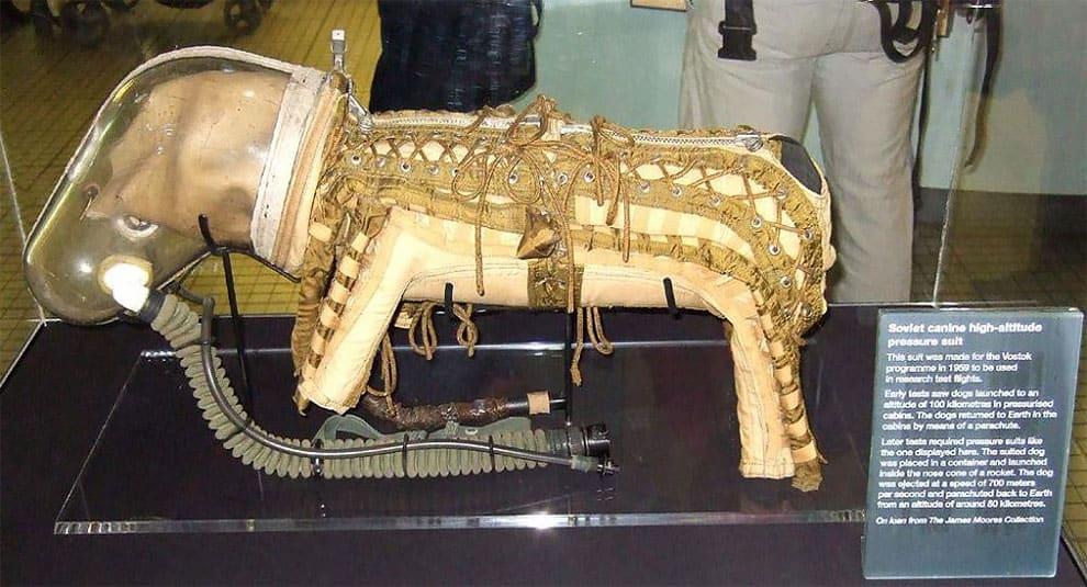 soviet dog spacesuit dog 1