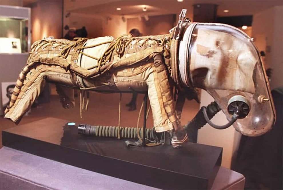 soviet dog spacesuit dog 2