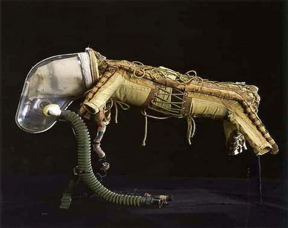 soviet dog spacesuit dog 3
