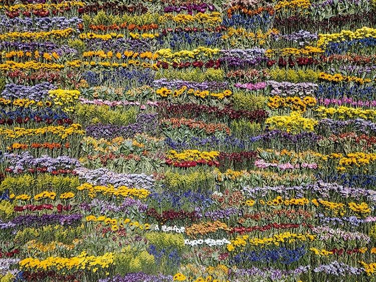 japanese flower art azuma makoto 5