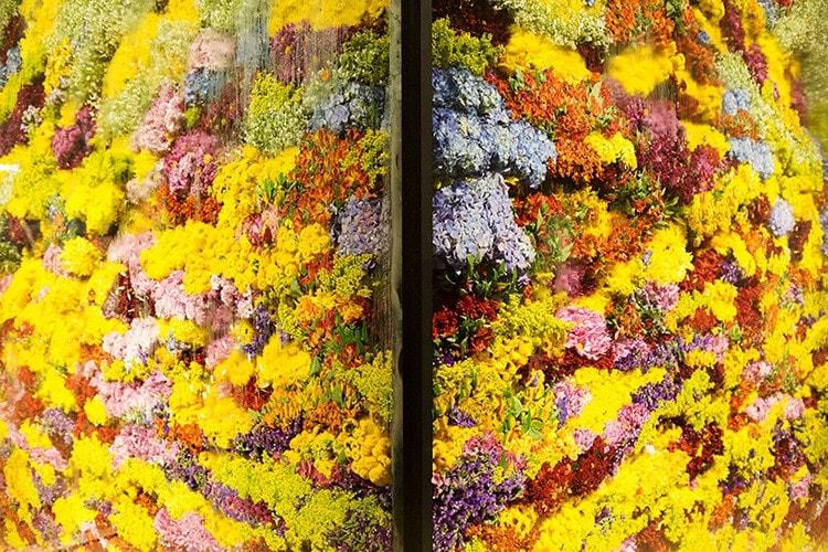 japanese flower art azuma makoto 9