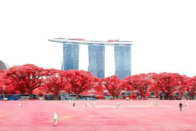 floral phantasmagoria finbarr fallon singapore 6