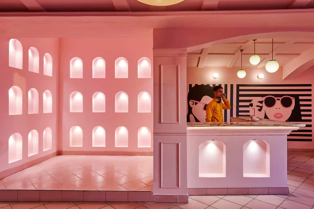 pink zebra restaurant india pictures 2