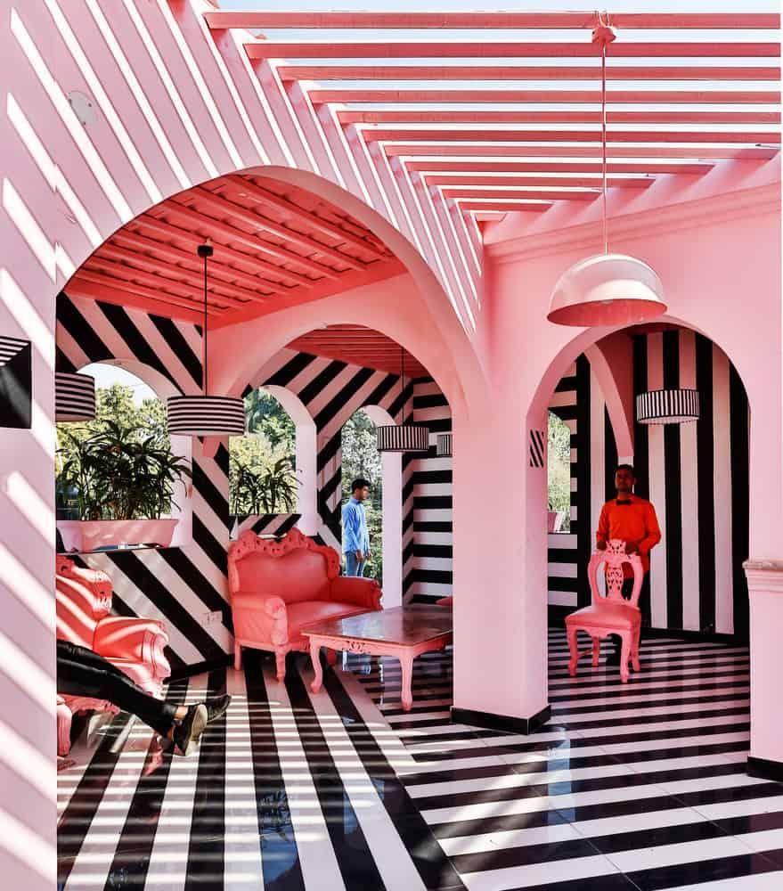 pink zebra restaurant india pictures 5