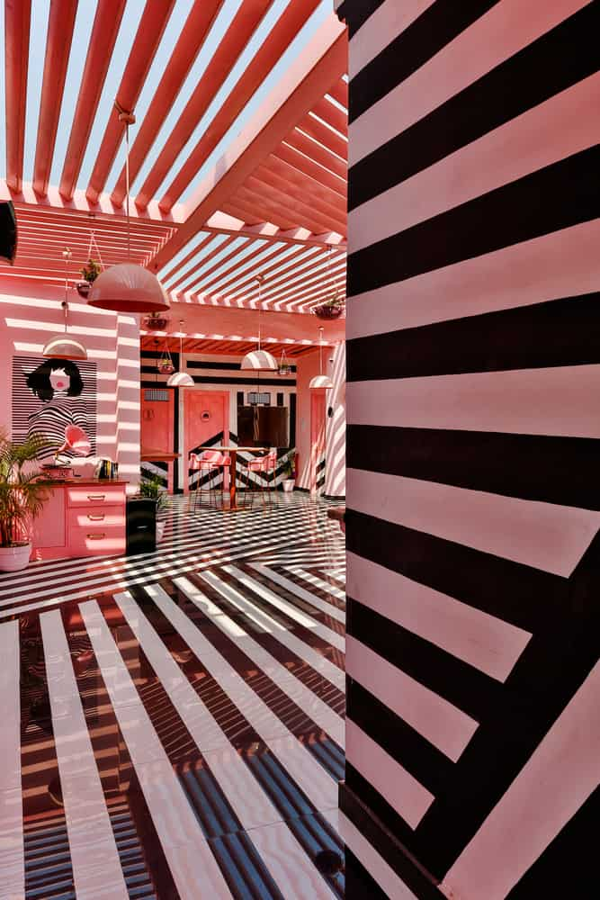 pink zebra restaurant india pictures 7