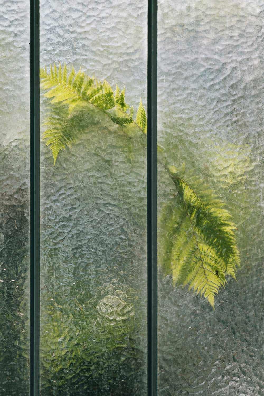 samuel zellers greenhouses 1