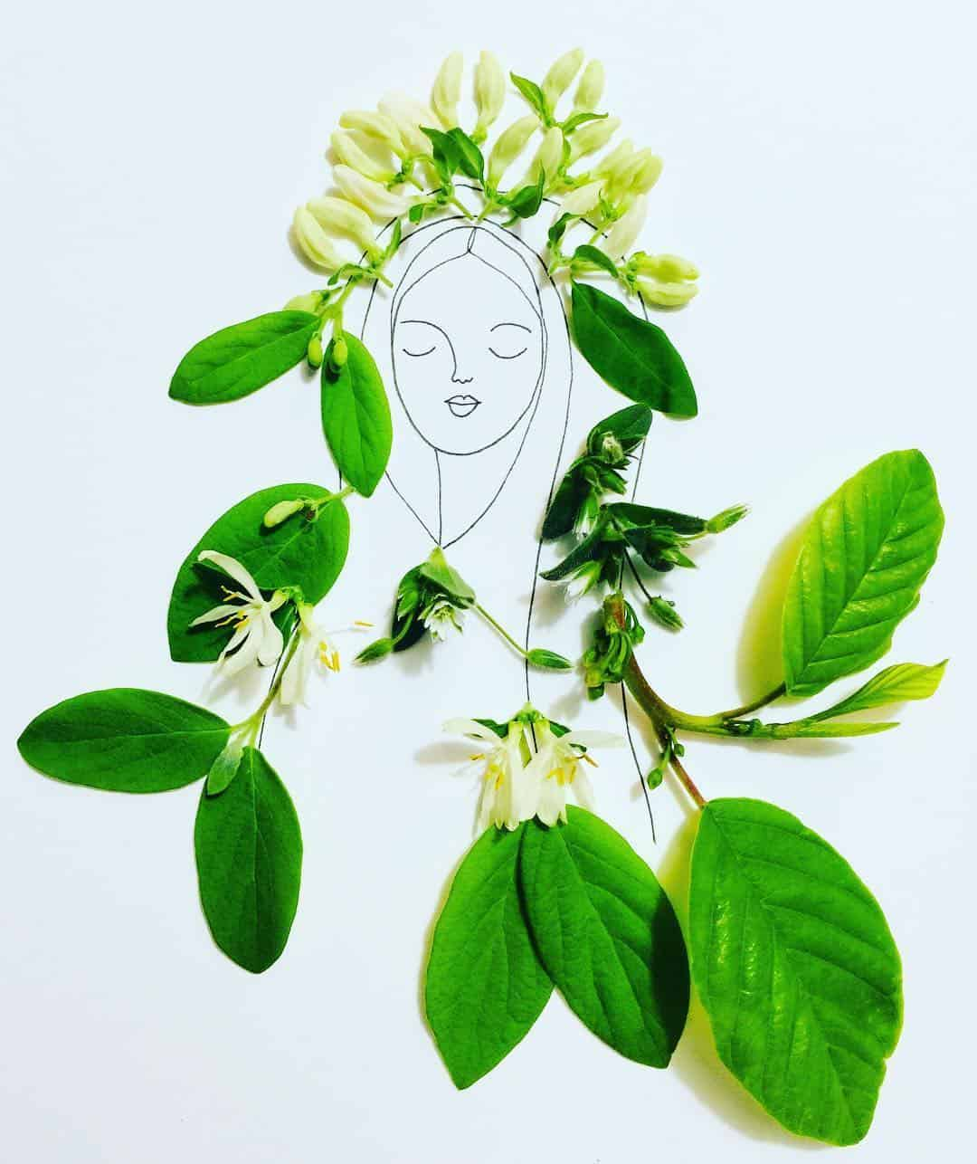 melissa flesher flower drawing 3