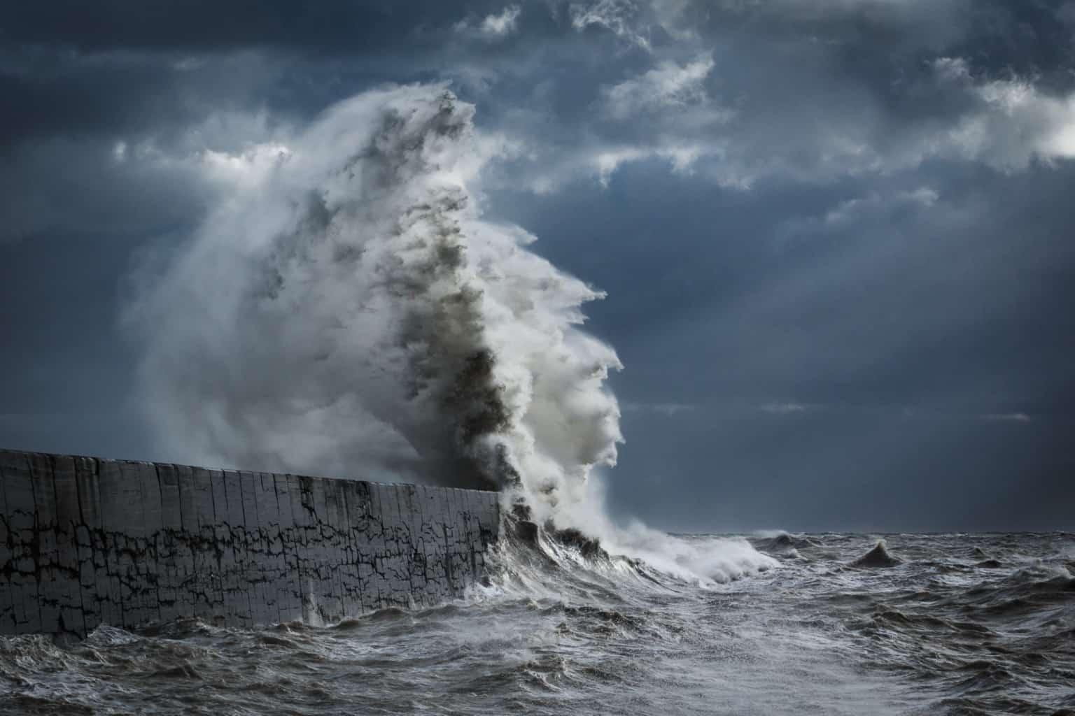 waves rachael talibart 3