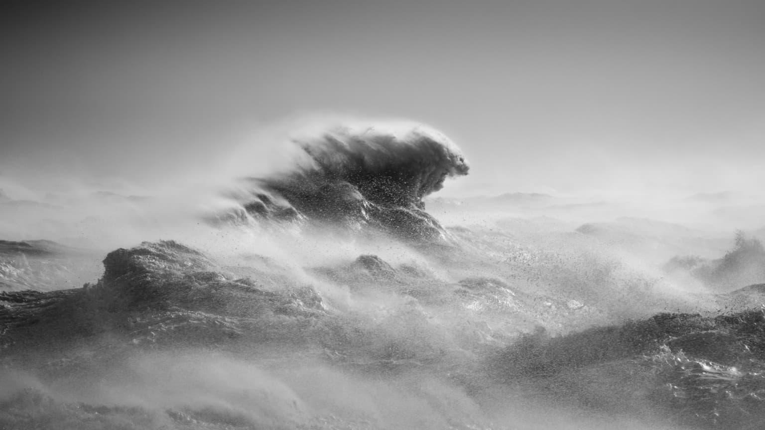 waves rachael talibart 4