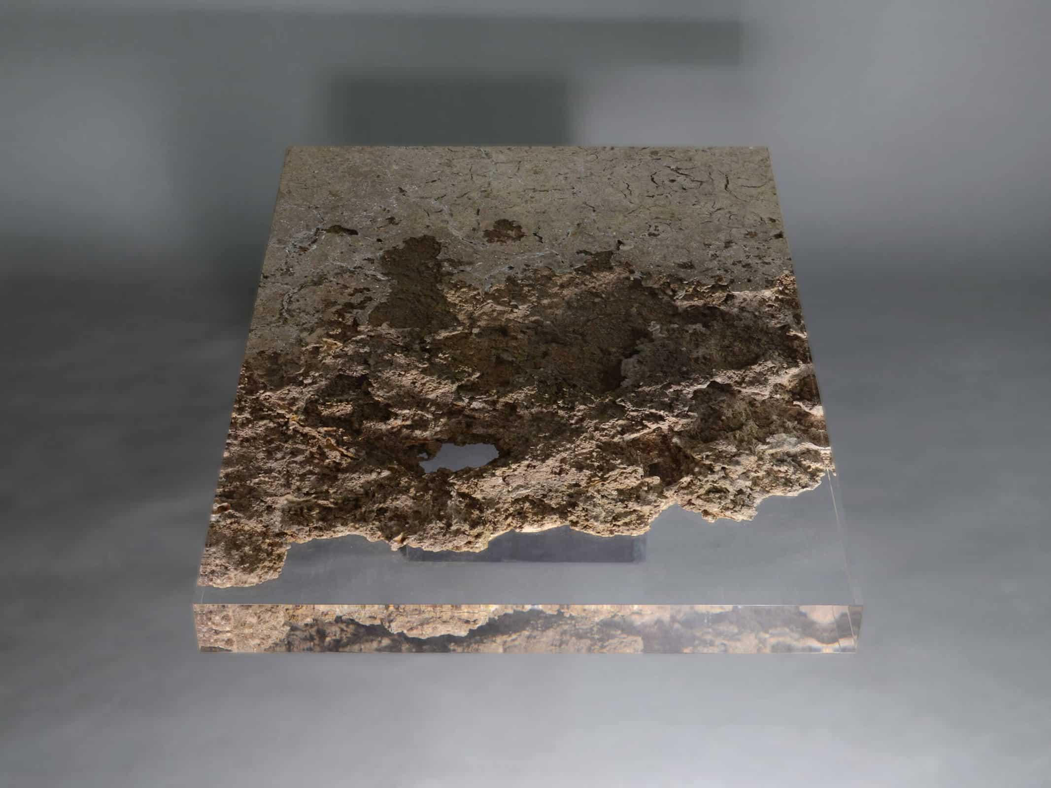 Alcarol nicola gallizia 12
