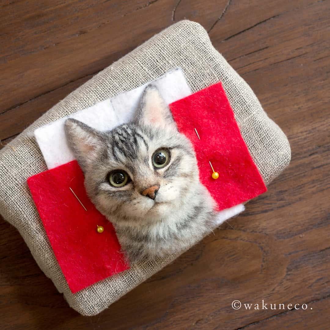 cats wakuneco 1