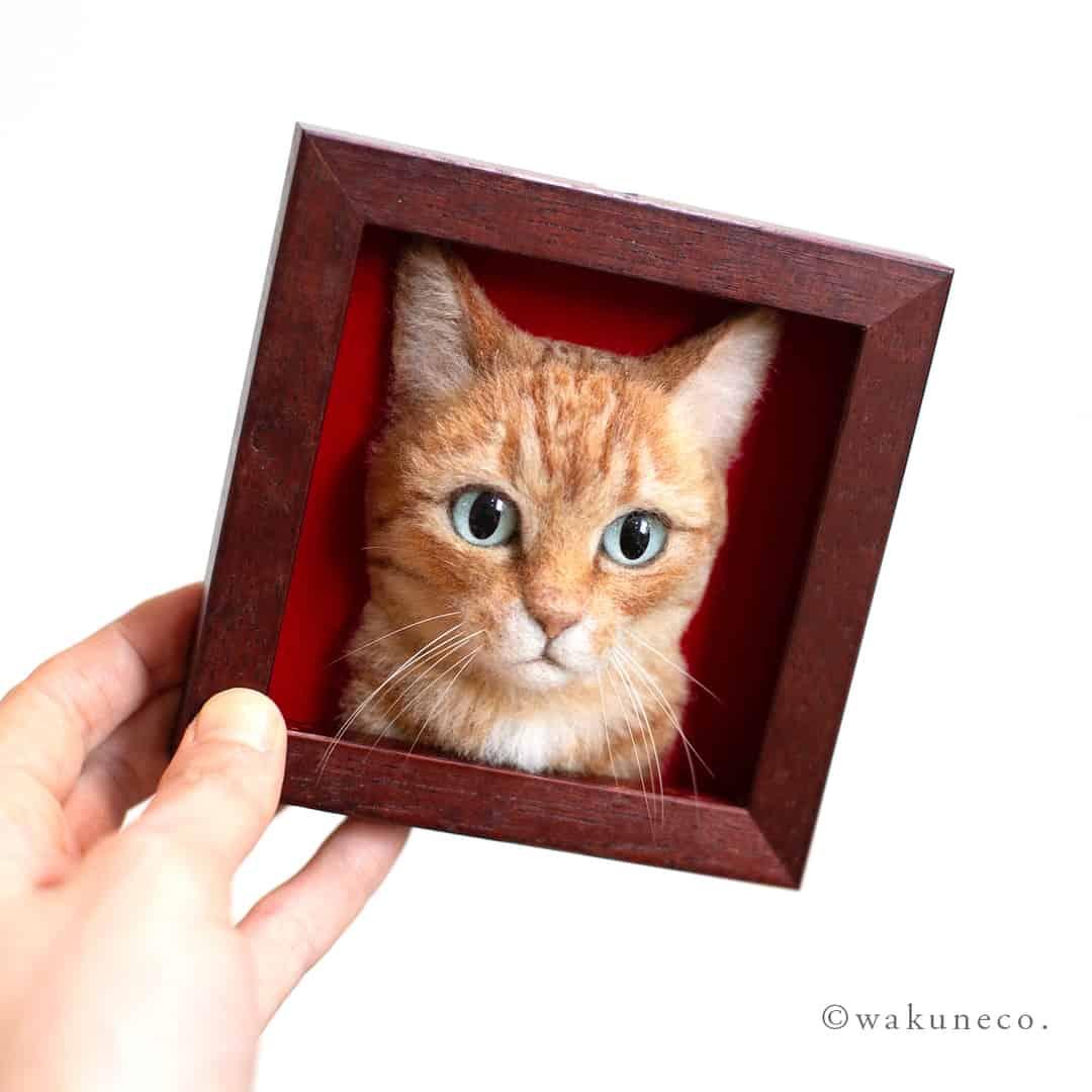cats wakuneco 2
